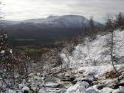 Tidlig vinter Oppdal